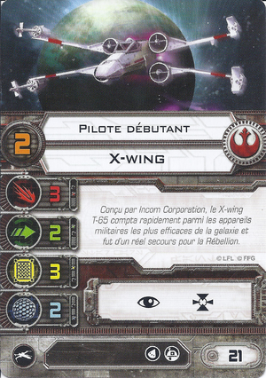 carte du pilote Pilote débutant